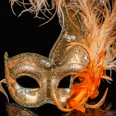 Masquerade Feather Masks